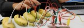 Preview image for LOM object Robotic - cycle 3 : Makey Makey