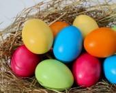 Vignette pour un objet LOM Des vidéos sur le thème de Pâques
