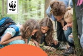 Preview image for LOM object Enseigner en extérieur : apprendre dans la forêt