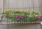 Vignette pour un objet LOM Enseigner en extérieur : tisser un tapis de fleurs