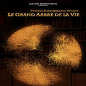 Preview image for LOM object Le grand arbre de la vie : vidéo de laPlattform