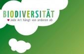 Preview image for LOM object Biodiversität : jede Art hängt von anderen ab