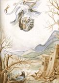 Preview image for LOM object Le pigeon, le loup et la cigogne : un conte du Maroc