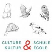Vignette pour un objet LOM A la découverte de la faune régionale