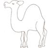 """Vignette pour un objet LOM Répertoire de chants : """"Un dromadaire dans le désert"""""""