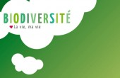 Preview image for LOM object Biodiversité : la vie, ma vie