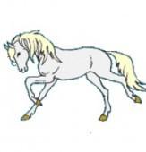 Vignette pour un objet LOM Pourquoi le cheval ne parle-t-il pas?