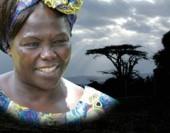 Preview image for LOM object Wangari Maathai: Friedensnobelpreisträgerin und Kämpferin