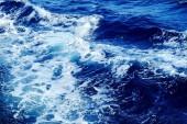 Preview image for LOM object Entdecke das Wasser. Die kleine Gewässerfibel
