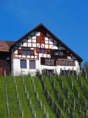 Preview image for LOM object Mathematische Lernplätze im Mittelrheintal. Lernheft für die Sekundarstufe