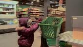 """Preview image for LOM object Les possibilités d`apprentissage chez les enfants de moins de 4 ans, le film """"Chariot de courses"""""""