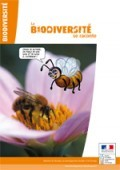 Preview image for LOM object La biodiversité se raconte 1