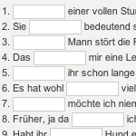 Preview image for LOM object Schulsprache Deutsch : Rechtschreibung interaktiv