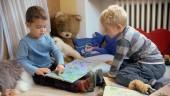 """Preview image for LOM object Les possibilités d`apprentissage chez les enfants de moins de 4 ans, le film """"Livres d`images"""""""