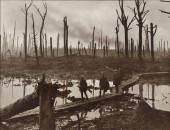 Preview image for LOM object Der Erste Weltkrieg – die Welt in Flammen