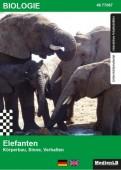 Preview image for LOM object Elefanten: Körperbau, Sinne, Verhalten