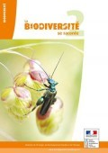 Preview image for LOM object La biodiversité se raconte 2